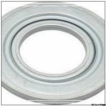 SKF 13889/13830 AV Nilos Rings